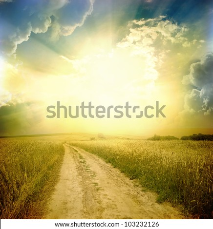 Rural  road through the field - stock photo