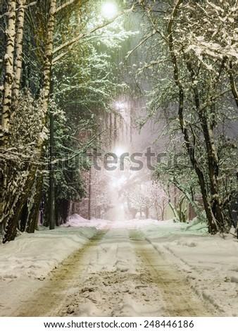 rural road with lanterns in the snow at night - stock photo