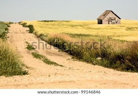 Rural Saskatchewan in summer with crops Canada - stock photo