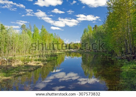 Rural scene. Green forest on a lake coast - stock photo