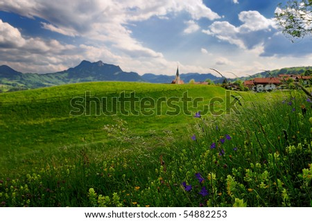 Rural scene of alpine meadow with mountains on the background. Focus is on the grass and flowers. - stock photo