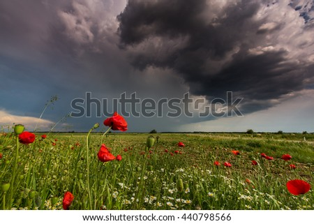 Rural scenery with storm clouds, in summer
