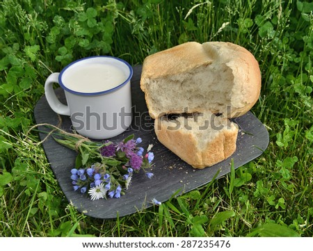 Rural still life with mug of milk, loaf of bread and bunch of wildflowers in grass - stock photo