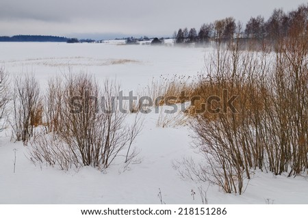 Rural winter landscape. The frozen lake in frosty fog. - stock photo