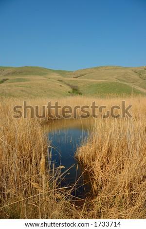 Zhenya S Portfolio On Shutterstock