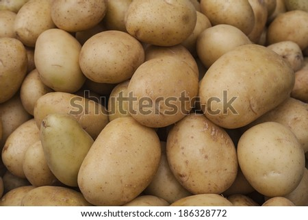 Russet White Potatoes Background