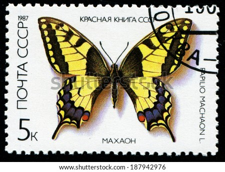 RUSSIA - CIRCA 1987: stamp printed by Russia, shows Butterfly Papilio Machaon, circa 1987 - stock photo