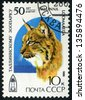 RUSSIA - circa 1989: stamp printed by Russia, shows lynx, wildcats circa 1989 - stock photo