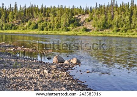 Russia, the Polar Urals. Taiga river Paga, Virgin Komi forests.  Russia, the Polar Urals. - stock photo