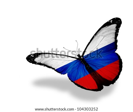 Russian flag butterfly flying, isolated on white background - stock photo