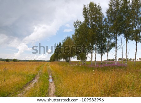 Russian rural landscape with dirt road along the field and bright cloudy sky