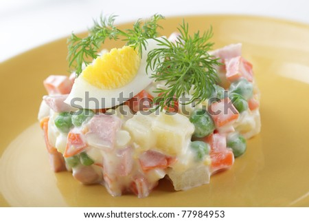 Russian salad on the plate closeup
