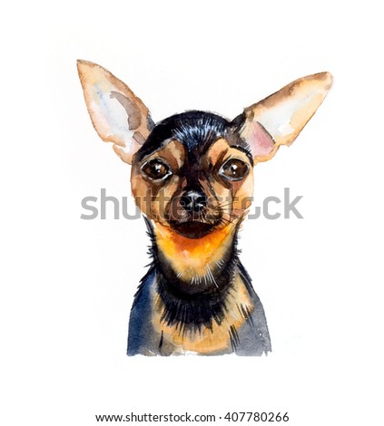 Russian Toy Terrier. Portrait of a dog. Set with small dogs. Watercolor hand drawn illustration