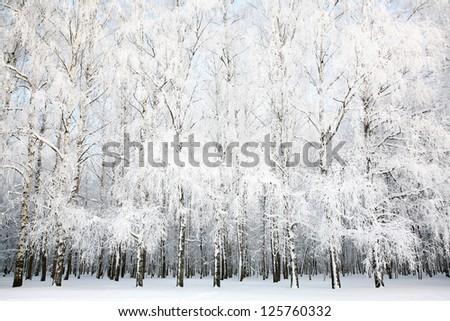 Russian winter - stock photo
