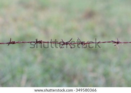 Rusted Barbed Wire, Barbed Wire Fence  - stock photo