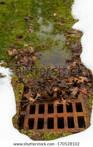 Rusted drainage grate clogged with leaves - stock photo
