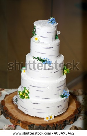 Rustic Cake with birch texture. - stock photo