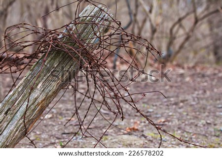 Rustic fence post with barbed wire on a farm - stock photo