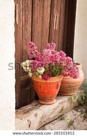 Rustic image with two vintage flowerpots and beautiful pink flower. - stock photo