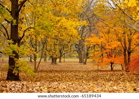 Rustic New England autumnal landscape in horizontal - stock photo