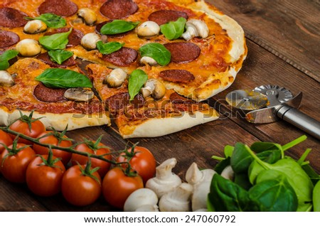 Rustic pizza with salami, mozzarella and spinach on a clay plate - stock photo