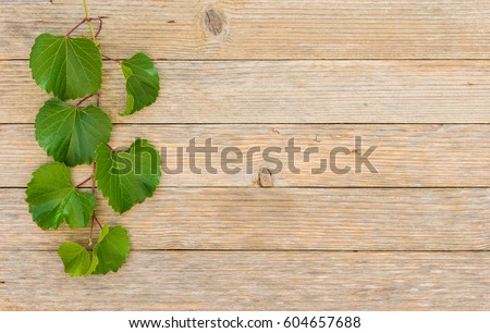 Rustic Wood With Green Vine Leaves Border For A Invitation Wine Festival Event
