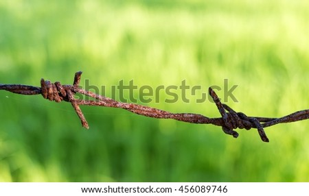 rusty barbed wire on green blur background - stock photo