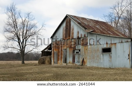 Rusty Barn, Bare Tree