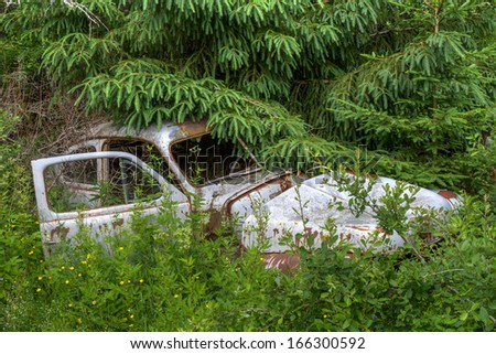 Rusty car wreck in the woods - stock photo