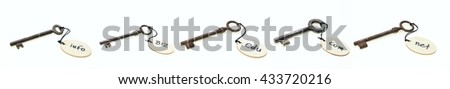 Rusty keys with wooden round tags with domain names, isolated on white background - stock photo