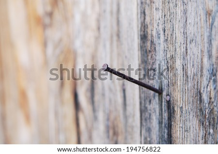 rusty nail in an old piece of wood - stock photo