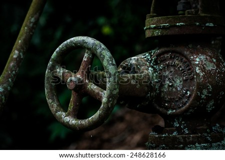 Rusty valve and pipe with moss on it - stock photo