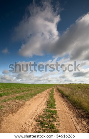 Rut crossing the field - stock photo
