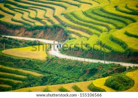 S curve, Rice field terraces at Sapa, Vietnam - stock photo