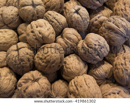 sack full of freshly harvested nuts - stock photo