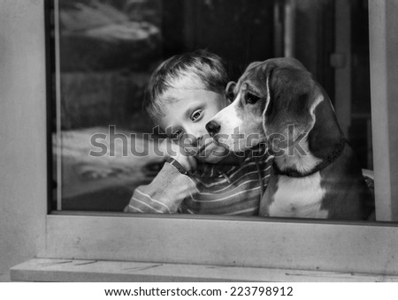 Sad boy with dog waiting near the window - stock photo
