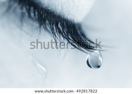tear stock images royalty free images vectors shutterstock