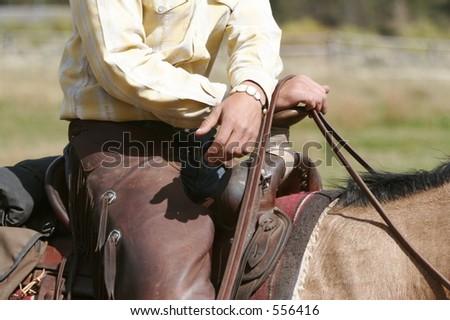 Saddled - stock photo