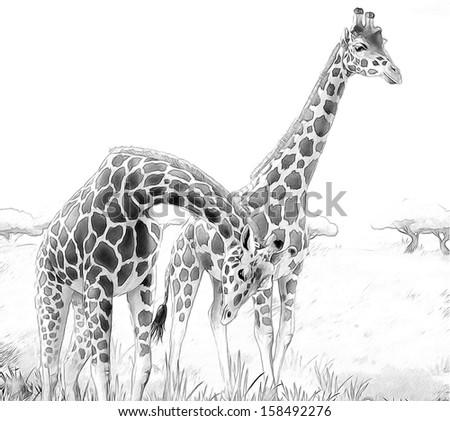 Colorful Giraffe Paintings Safari Giraffes Coloring
