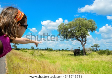 Safari in Africa, child in car looking at elephant  - stock photo