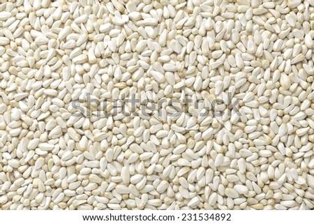 Safflower seeds - stock photo