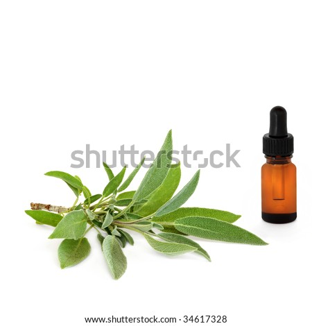 Sage herb leaves and an aromatherapy essential oil glass dropper bottle isolated over white background. - stock photo