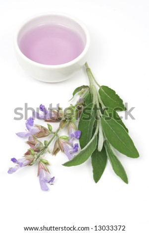 Sage plant and essential oil used for aromatherapy - stock photo