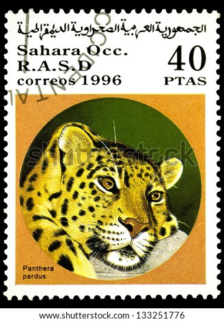 "SAHARA - CIRCA 1996: A stamp printed in Sahrawi Arab Democratic Republic, shows a Pantera pardus, with the same inscription, from the series ""Wild cats"", circa 1996"