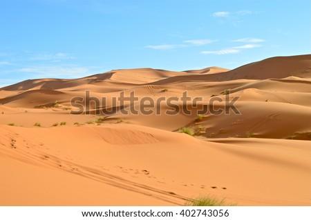 Sahara Desert in Morocco - stock photo