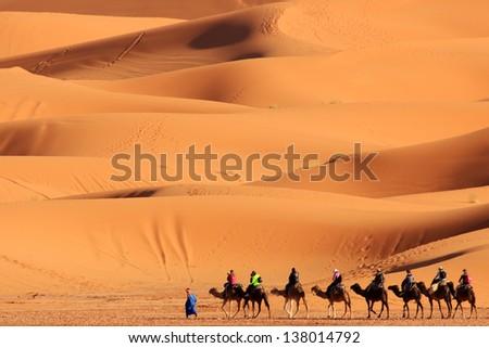 Sahara desert sand dunes morocco nomad Berber camel - stock photo