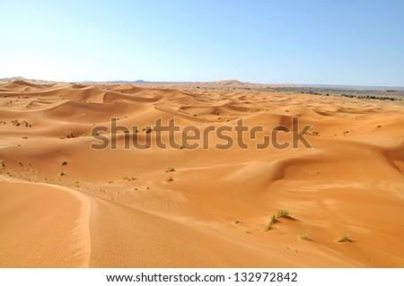 Sahara landscape - stock photo