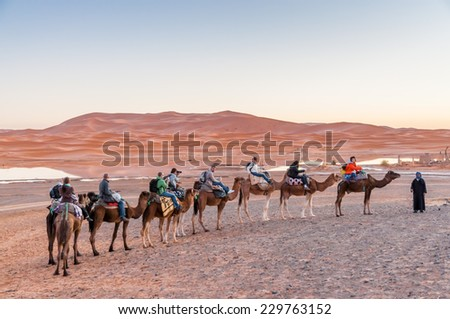 SAHARA, MOROCCO - 25 NOV: Camel caravan with tourists in the sahara desert.  November 25, 2008 in Morocco, Africa - stock photo