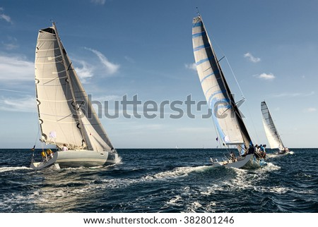 Sailing yacht race. Sailing.  Yachting - stock photo