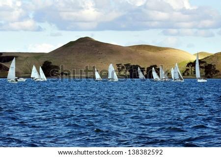 Sailing yachts sailing in Waiheke Island, New Zealand. - stock photo